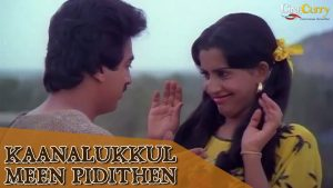 Kaanalukkul Meen Pidithaen Song Lyrics