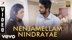 Nee Nenjellaam Song Lyrics